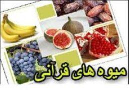 میوه های قرآنی و خواص آنها
