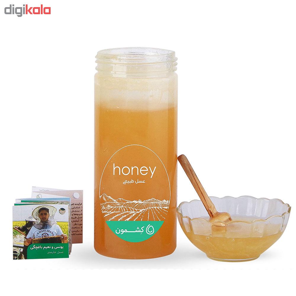 مشخصات و لیست قیمت عسل خارشتر یونس و نعیم باغچگی کشمون - ۹۰۰ گرم