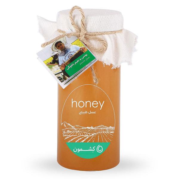 بررسی و خرید فوری عسل خارشتر یونس و نعیم باغچگی کشمون - ۹۰۰ گرم